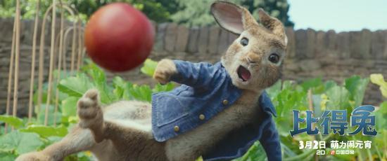 电影《比得兔》点映场好评来袭 治愈年后综合症